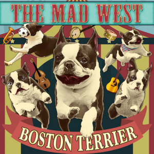 3rd Album「BOSTON TERRIER」